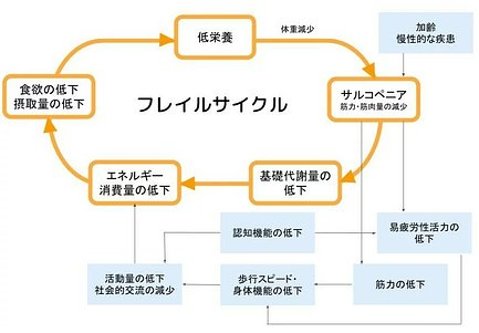 フレイルサイクルのイメージ図