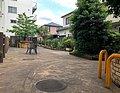 応援家族 昭和記念公園